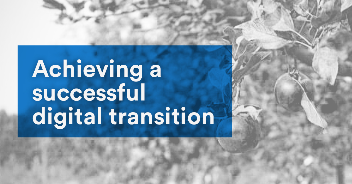 Achieving a successful digital transition